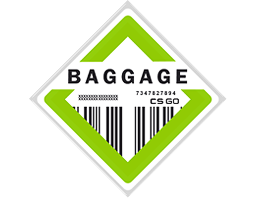 The Baggage Collection